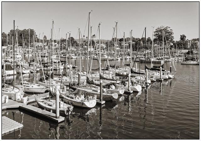 Santa Cruz harbor (monochrome)