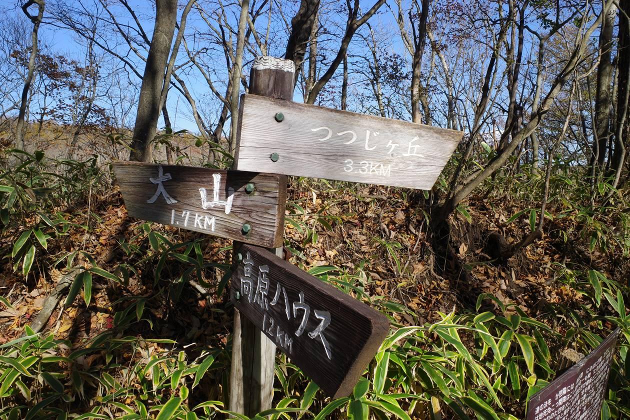 【日光】紅葉の大山登山 戊辰の道分岐