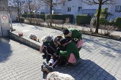 24. Februar 2019 - Umzug Küssnacht am Rigi