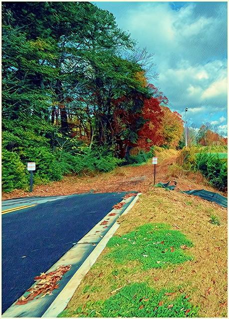 Where the Road Ends | November 26th, 2020 | Prisma photograph