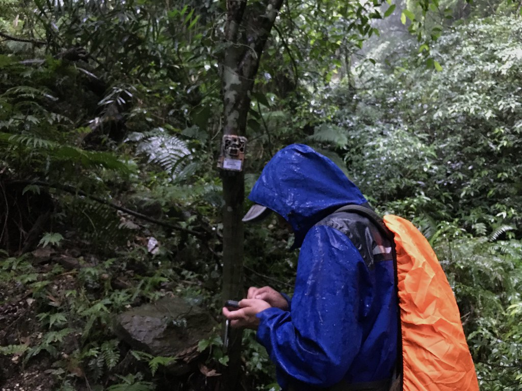 各地狩獵自主管理計畫都須配合科學監測調查。鄭雅云攝。