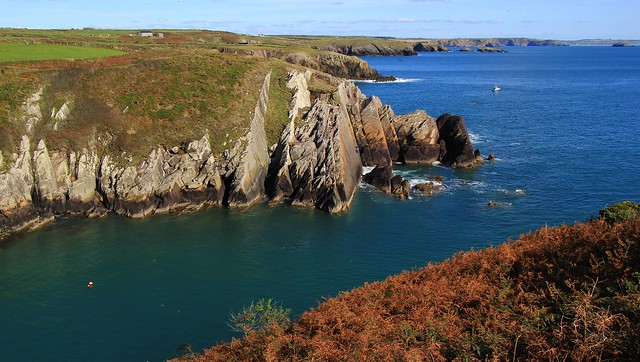 Porth Clais - Pembrokeshire 270920 (5)