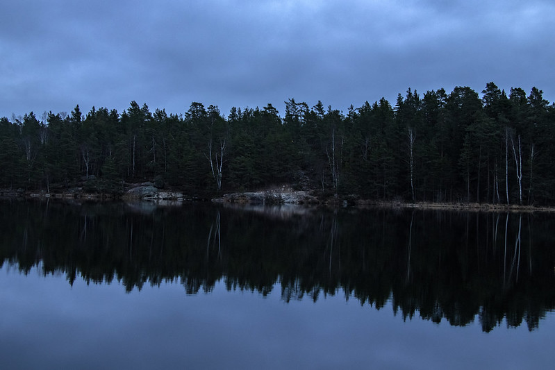 Blue Hour Reflection