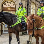 Poppy and Rufford patrolling the streets of Preston