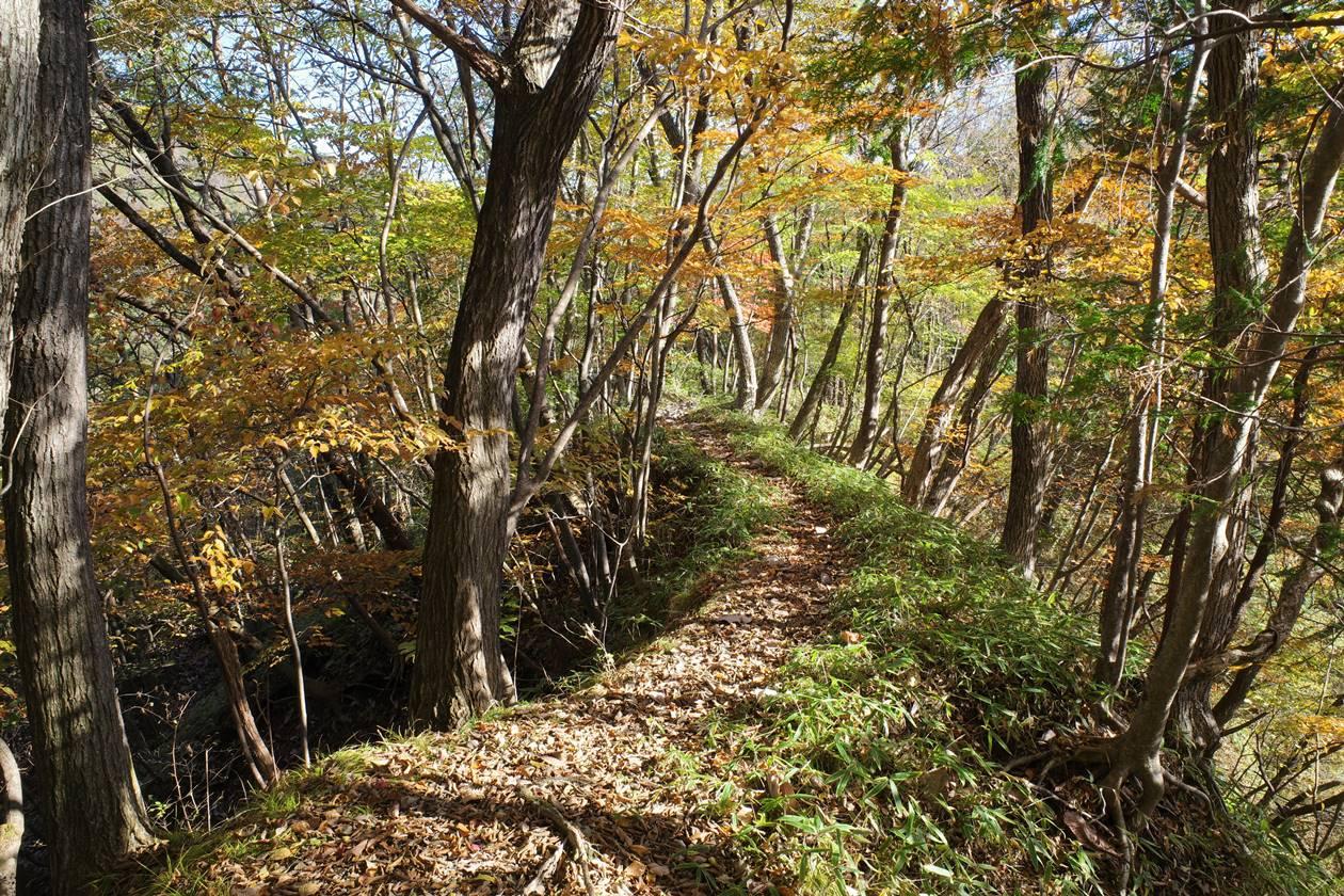 秋の日光 紅葉の戊辰の道