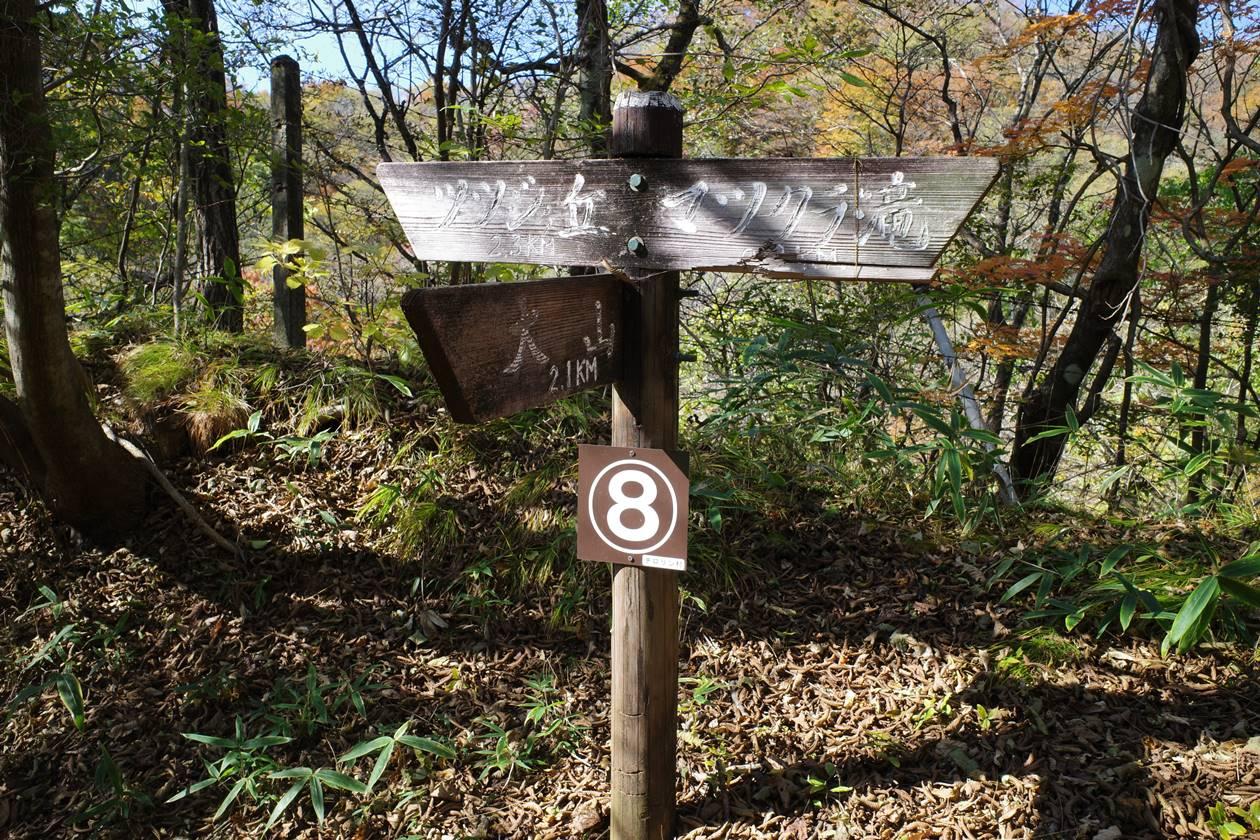 日光・大山ハイキングコース8番分岐点