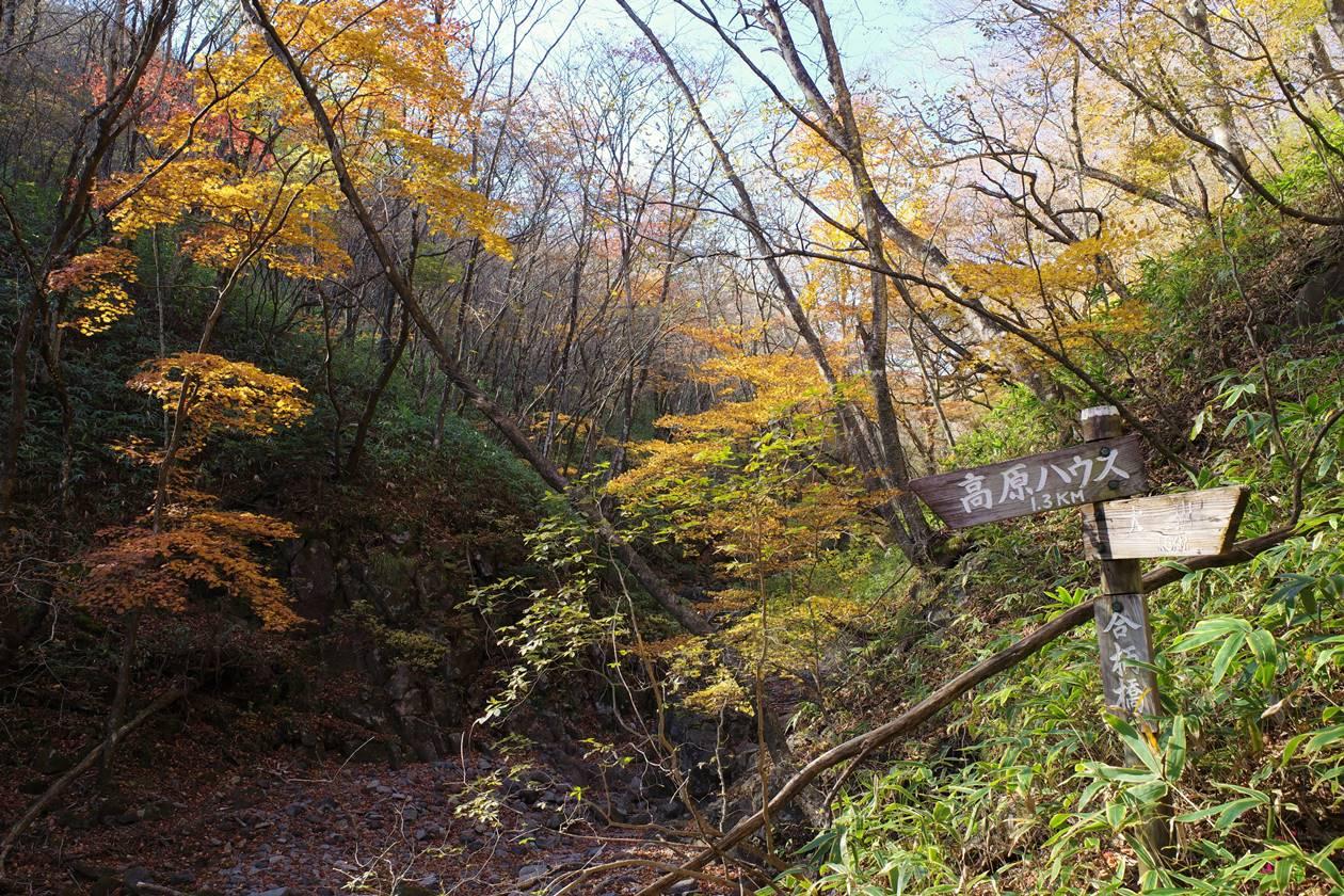 【日光】紅葉の大山登山 合柄橋