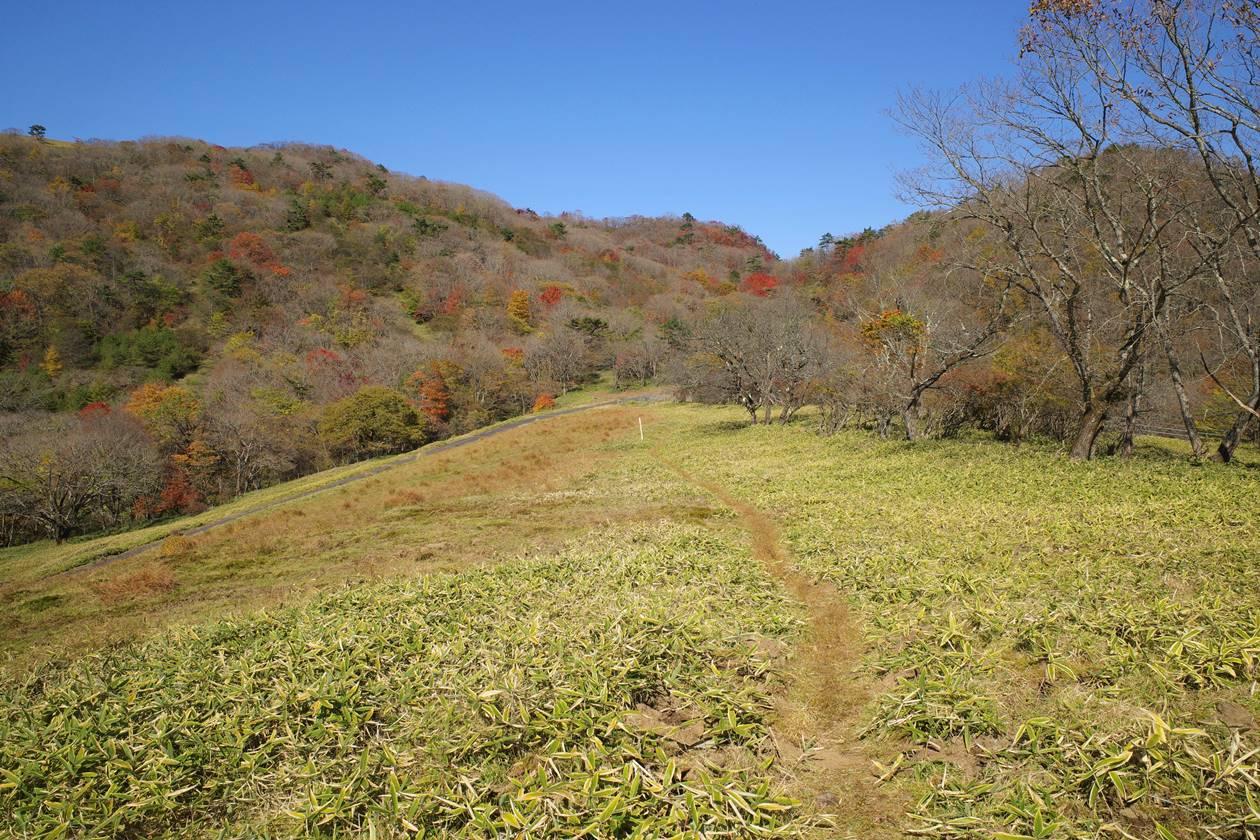 秋の日光 霧降の滝~大山へ日帰り紅葉登山