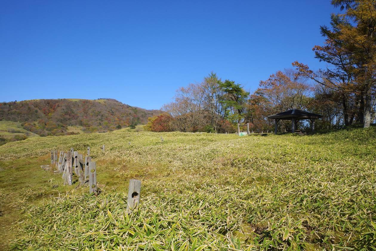 【日光】草原風景の猫ノ平