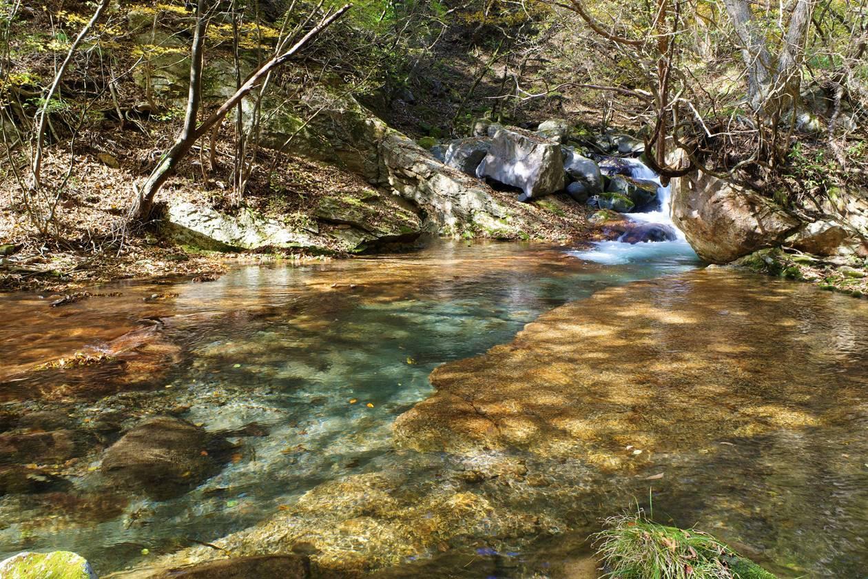 玉簾ノ滝の清流
