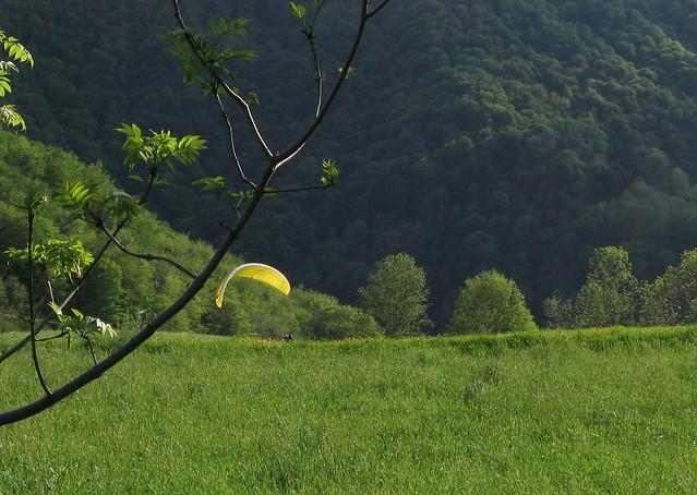 10/05/2K7 plateau des plaines, 31160 Herran