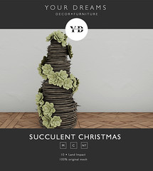 {YD} Succulent Christmas