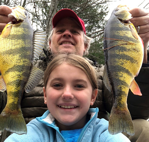 Photo of father and daughter holding a pair of yellow perch