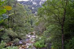 Asturias - Senda del Oso - Proaza