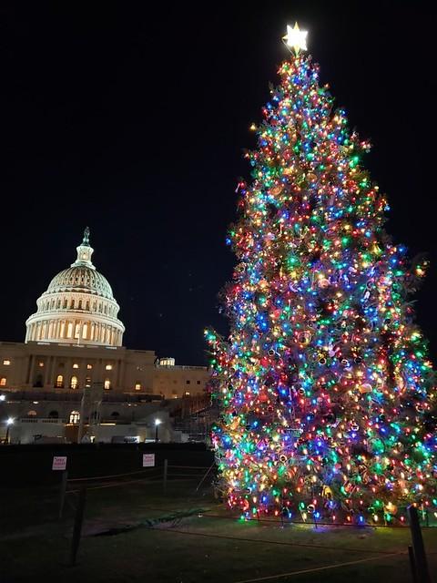 Capitol Christmas Tree Lighting Ceremony 2021 A Christmas Story Worth Telling Usda