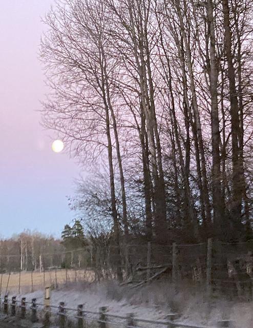moon_5304