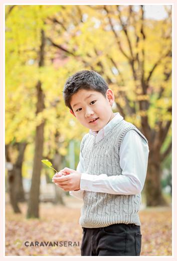 イチョウで黄色に染まった公園と少年