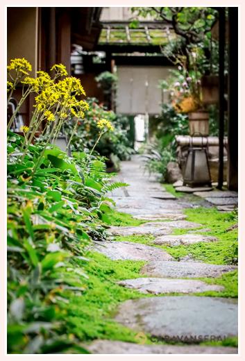名古屋市東区にある料亭 大和屋の庭園