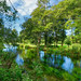 Itchen Navigation, near Bramsbridge, Hampshire    (tags:    landscape hdr aurora river riveritchen trees water itchennavigation bramsbridge hampshire uk canon eos7dmkii efs1018isstm sundaylights nature    )