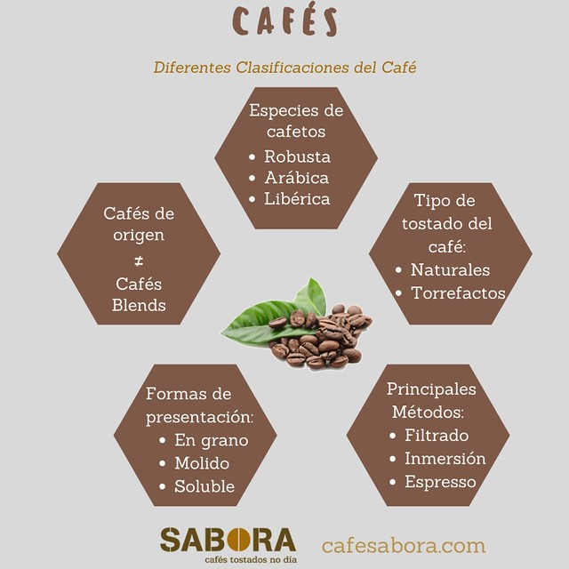 Café diferentes clasificaciones