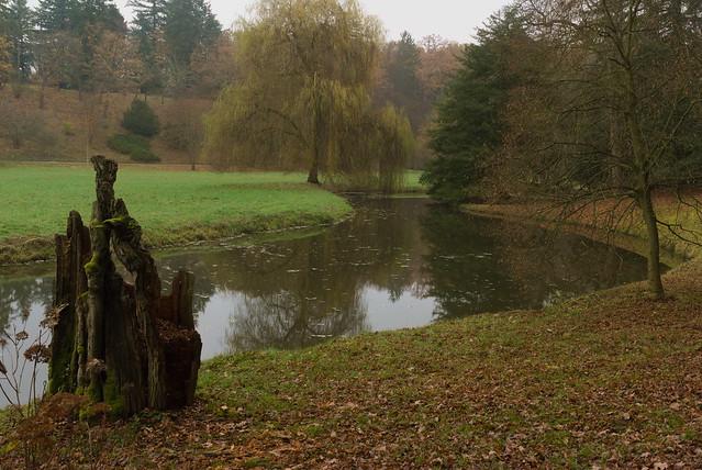 meandry potoka v parku