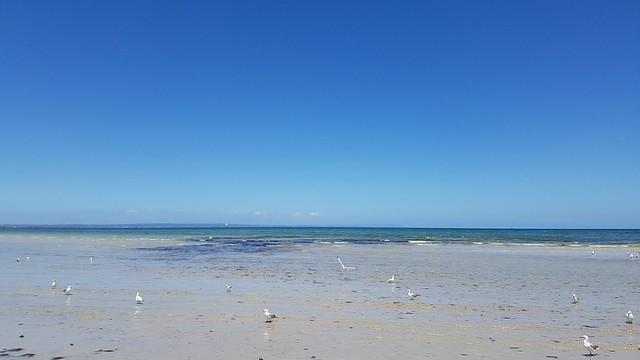 Looking towards Frankston. No filters required. Midday 3/12/20