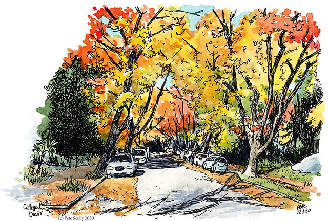 college park, davis