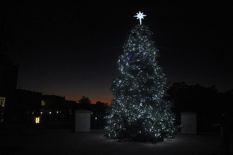 TreeLighting12-1-20