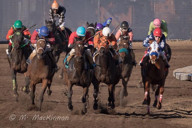 Century Downs Racetrack