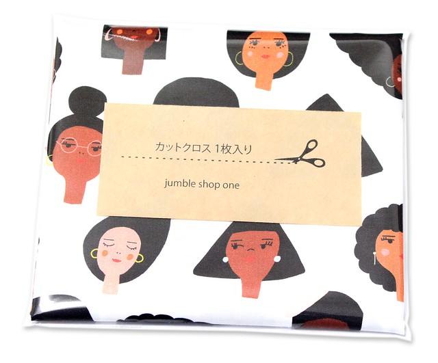 カットクロス Paintbrush Studio Fabrics Friends and Faces 120-21479 Geometric Girls