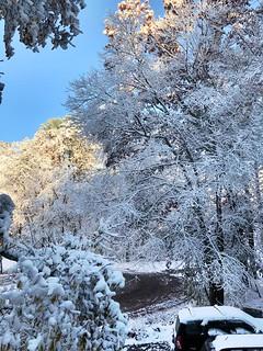Autumn Snowstorm Surprise