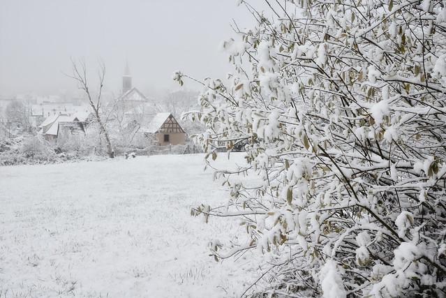 Le nature a revêtu son manteau blanc