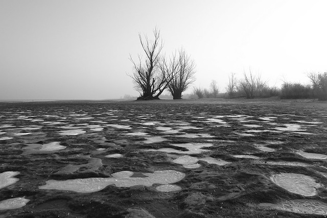 Frozen beach BW