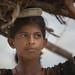 Inde du nord: jeune fille du Rajasthan.    (tags:    inde india asie asia claudegourlay rajasthan chandelao portrait    )