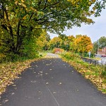 More golden Autumn pathways on the Guild Wheel