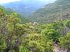Le vallon du Niffru à  la descente depuis le GR20