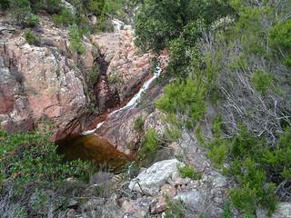 La cascade au-dessus de la grande vasque avec tronc en travers