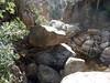 Canyon de Lora : descente vers le seuil rocheux