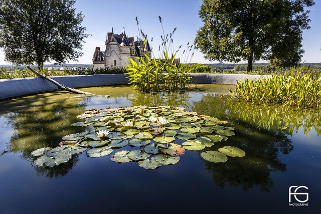 The magnificent Amboise garden
