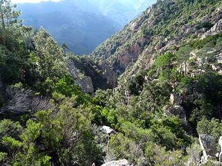 Le canyon depuis le monolithe de Lora