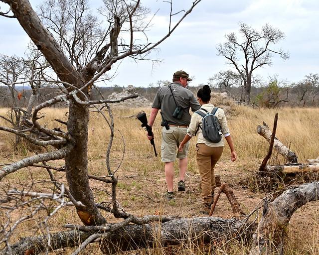 Caminando por la sabana africana en un bush walk