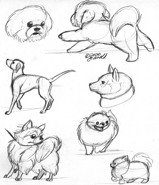 12.2.2020 - National Dog Show Drawings