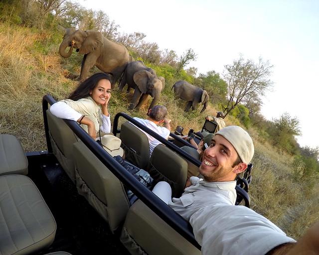 Mejor safari por África