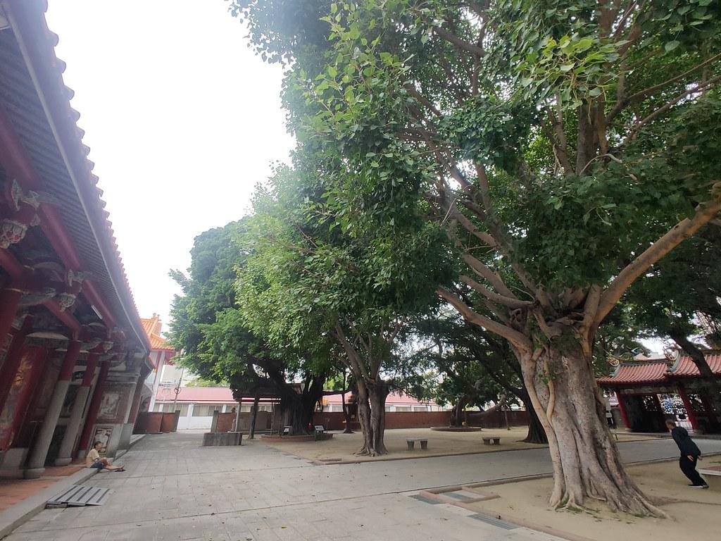 台南北區開元寺 (4)