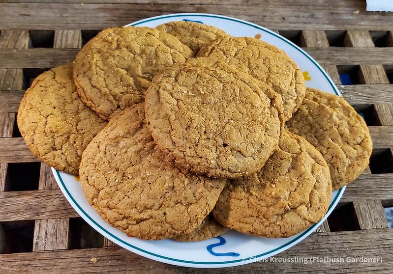 Maple Sugar Cookies, November 2020