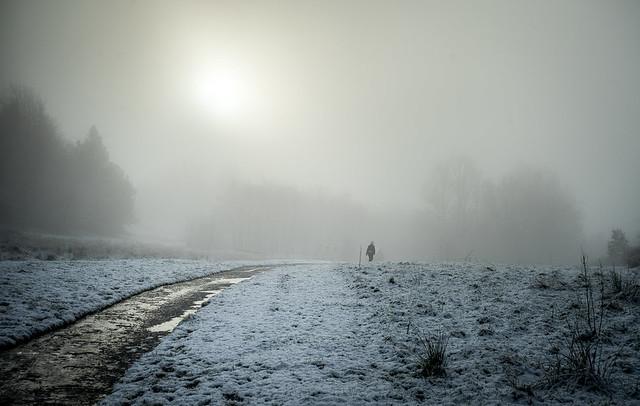 Walking home (Explored)
