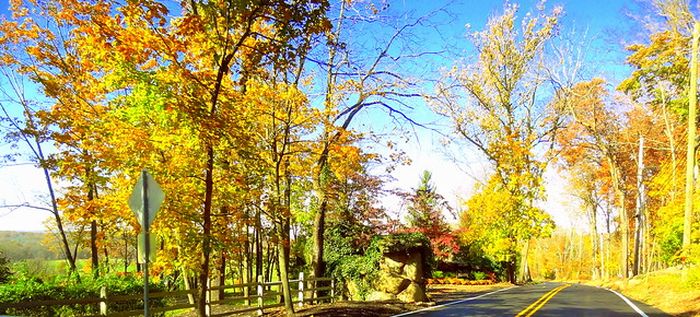 Road in Rural New Jersey