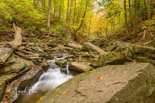 grindstonecreek creek nature landscape ontario hamilton waterdown autumn fall