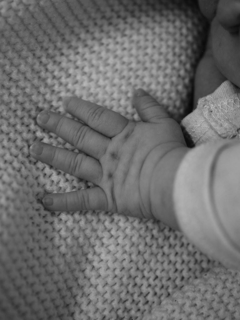vauva-arki