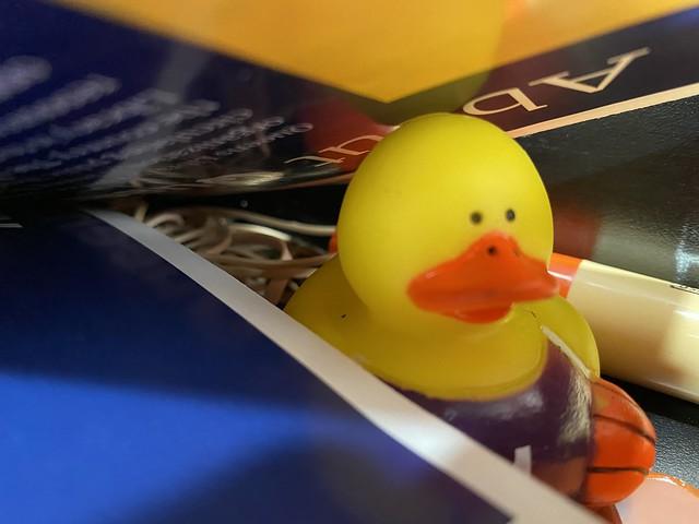 Ducking Covid